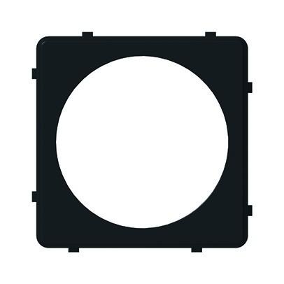 Zentralplatte